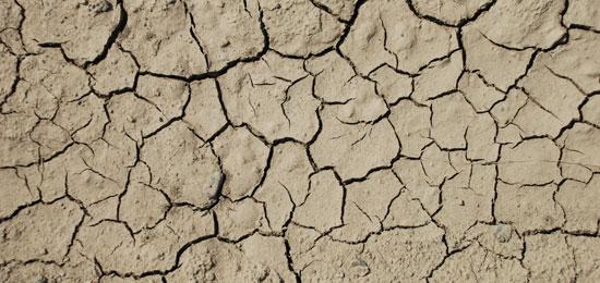 乾燥肌がかゆみの原因