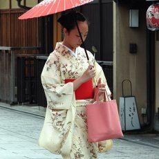 日本の価値を見直そう!純国産シルク(絹)のいまとこれから